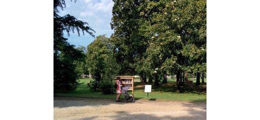 I Parchi In Citta Una Risorsa Per La Salute Azioniquotidiane