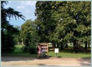 parchi e attività fisica